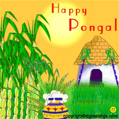 Essay on pongal